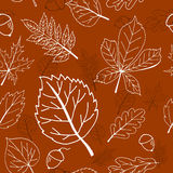 Seamless brown pattern with autumn leaves and acorns Stock Image