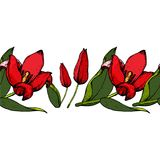 Seamless brush of tulips Stock Image