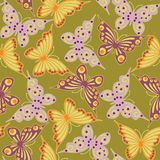 Seamless  with  butterflies Stock Photos