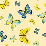 Seamless with butterfly. Stock Image