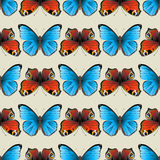 Seamless butterfly ornament Stock Photography
