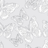 Seamless  butterfly Stock Photos
