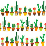 Seamless with cactus flowers. In colorful pot vector illustration