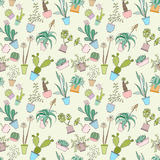 Seamless cactus pattern. Can be used for wallpaper, website background, wrapping paper. Cactus natural bright pattern. Summer design. Flower concept royalty free illustration