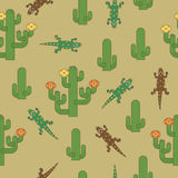 Seamless cactus pattern Royalty Free Stock Images