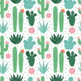 Seamless cactus pattern. Exotic desert cacti houseplants, repeating cactuses vector background. Seamless cactus pattern. Exotic desert cacti houseplants stock illustration