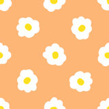Seamless camomile floral  pattern. Stock Photos