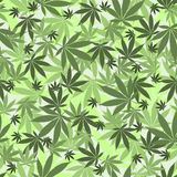 Seamless cannabis pattern Royalty Free Stock Photography