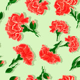Seamless Carnations on green background. Stock Photo