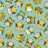 Seamless cartoon bird owls pattern Royalty Free Stock Images