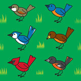 Seamless Cartoon Birds Pattern Stock Photography