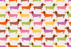 Seamless cartoon dachshund dog pattern Royalty Free Stock Image