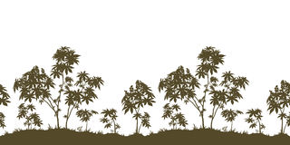 Seamless, Castor Plants and Grass Silhouette Royalty Free Stock Photo