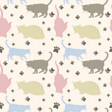 Seamless cats pattern Royalty Free Stock Photos