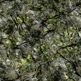 Seamless cave wall. With moss texture Royalty Free Stock Photo