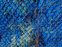 Seamless Chain Link Fence. On blue color Stock Photography