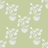Seamless with Chamomile in Flowerpot Stock Images