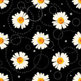Seamless chamomile pattern on black background with doodles Royalty Free Stock Photos