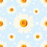 Seamless chamomile pattern on blue background Stock Image