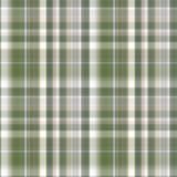 Seamless checkered pattern. Stock Photography