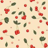 Seamless cherries Stock Image