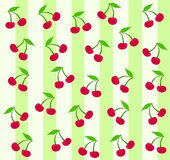 Seamless cherry background. Background/wallpaper with cherry pattern over white and green stripes Royalty Free Stock Photos