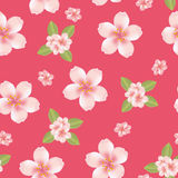 Seamless cherry blossom background Stock Photography