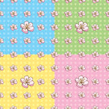 Seamless Cherry Blossom Pattern. S in four colors royalty free illustration