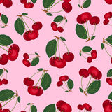 Seamless cherry pattern. On the pink. Vector background Stock Photos