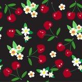 Seamless cherry pattern Royalty Free Stock Photo