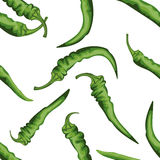 Seamless chile pepper pattern. Tile green vegetable pattern. Veg Royalty Free Stock Photo