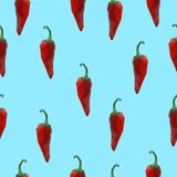 Seamless chili pepper pattern. Seamless pattern with red chili peppers. Vector illustration Royalty Free Stock Photos