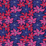 Seamless Christmas background with red, blue and pink poinsettias. Royalty Free Stock Photo