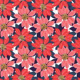 Seamless Christmas background with red and pink poinsettias. Royalty Free Stock Image
