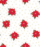 Seamless Christmas background with red poinsettias and gold beads. Royalty Free Stock Image