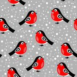 Seamless christmas pattern with bullfinches. Vector illustration. On a gray background royalty free illustration