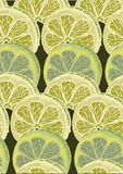 Seamless Circular Lime Citrus Pattern Background. style sketch Royalty Free Stock Image