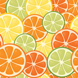 Seamless Citrus Stock Images