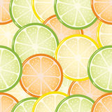Seamless citrus background Royalty Free Stock Photo