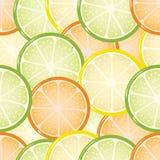Seamless citrus background Royalty Free Stock Photo