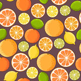 Seamless citrus Stock Photography
