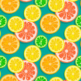 Seamless citrus fruits background vector Stock Photo
