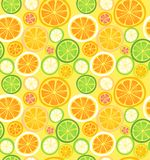 Seamless citrus fruits pattern Royalty Free Stock Images