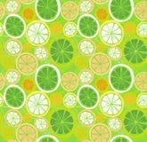 Seamless citrus fruits pattern Royalty Free Stock Photos