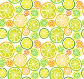 Seamless citrus fruits pattern Royalty Free Stock Photography