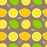 seamless citrus modell Royaltyfri Fotografi