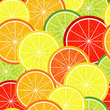 Seamless citrus  pattern Stock Photos