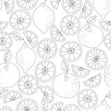 Seamless citrus pattern. Fruit vector background. Black and white background with lemon and orange. Natural and healthy. Food. Fresh juice vector illustration