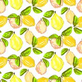Seamless citrus pattern. Hand drawn sketched lemons and citrons print. Textile, wallpaper and craft paper design. stock illustration
