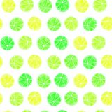Seamless citrus pattern royalty free stock photos